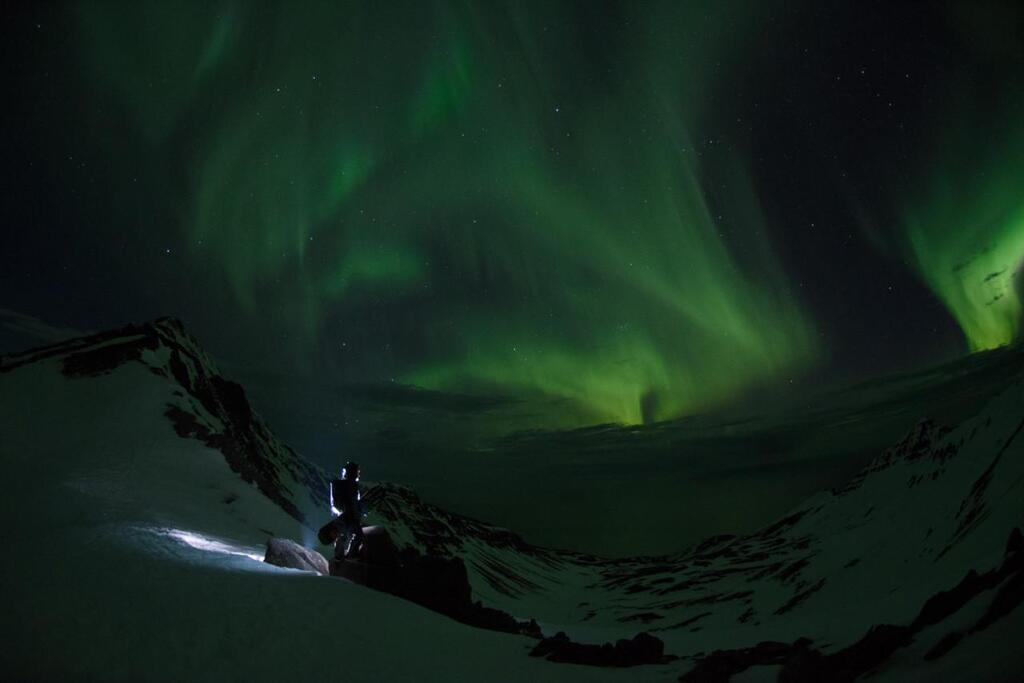 Splitboarding under the nothern lights