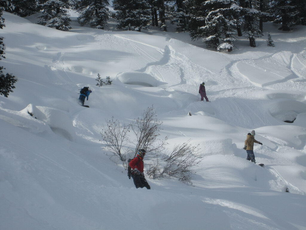 Backcountry Playground